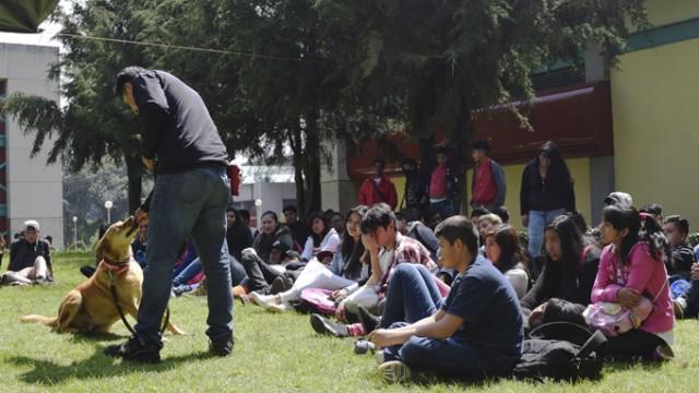 Resultado de imagen para Tlalpan realiza primer Jornada de Bienestar Animal